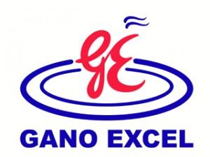 Гано Ексел